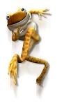 grenouille trempolinno